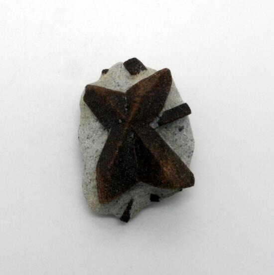 Staurolite Crystal in Matrix