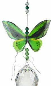 Suncatcher Butterfly Birdwing