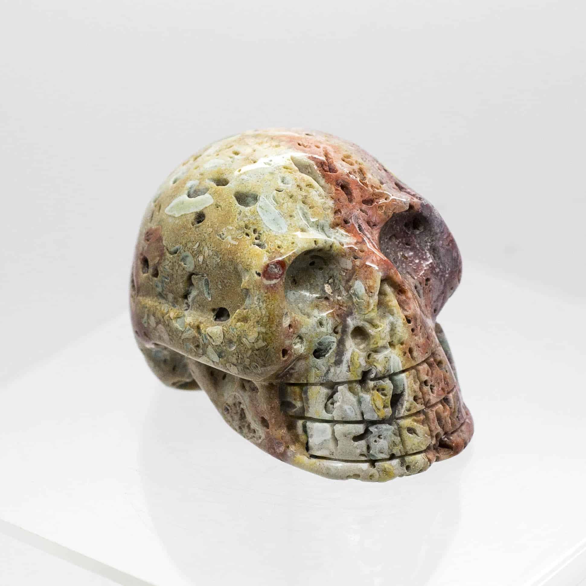 Ocean Jasper Skull