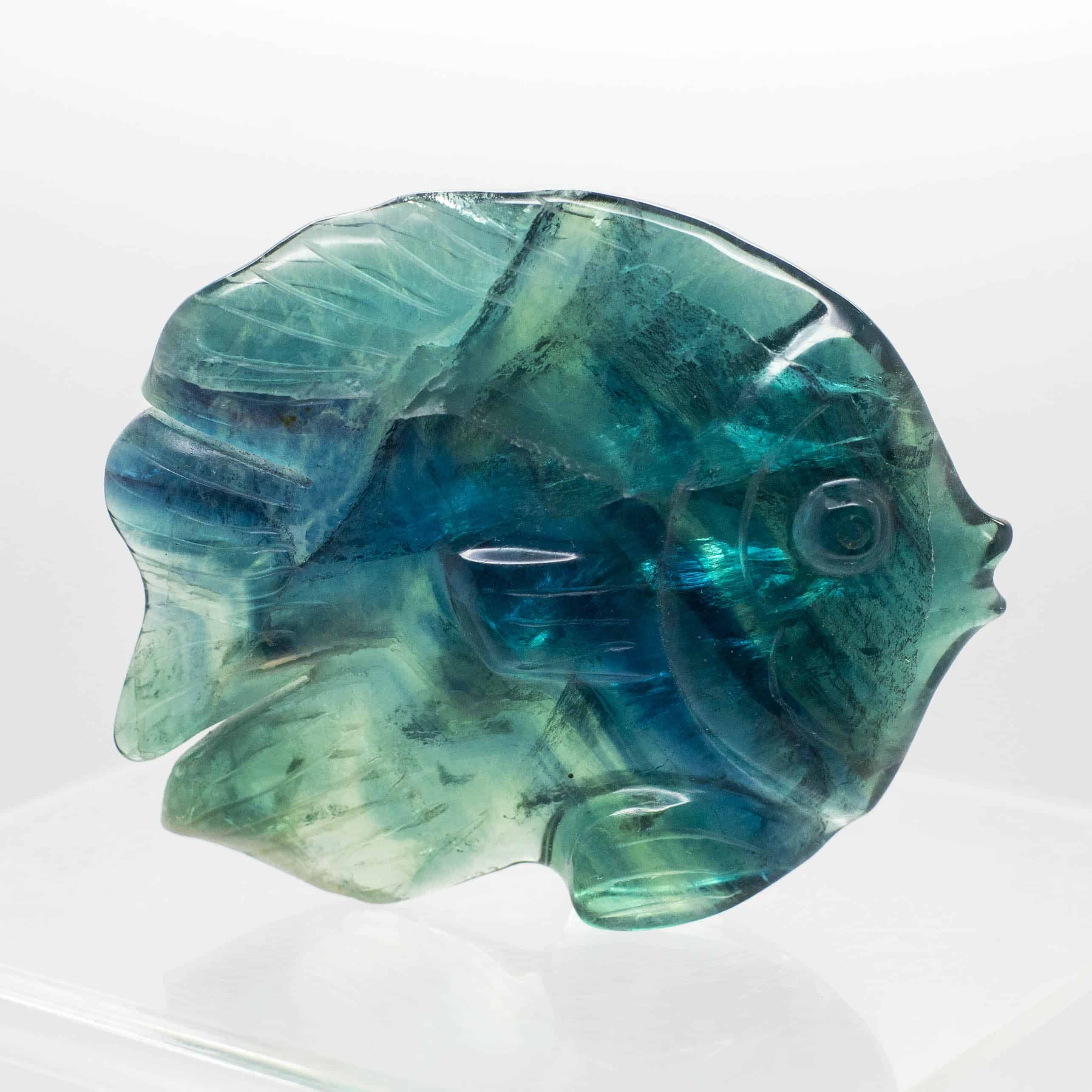 Fluorite Fish 2172