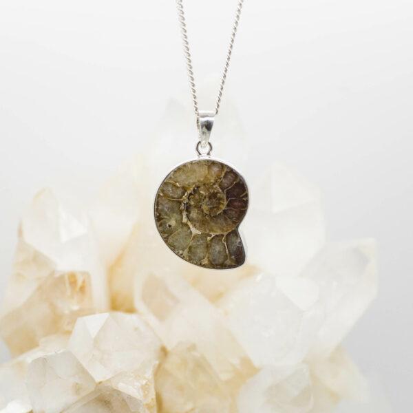 Ammonite pendant front 2
