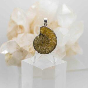 Ammonite Pendant front