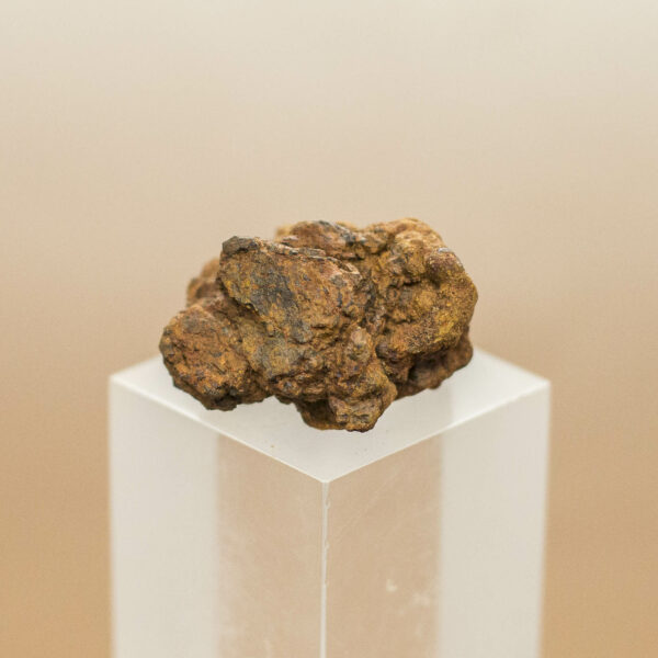 Wolf Creek Iron Meteorite (1)