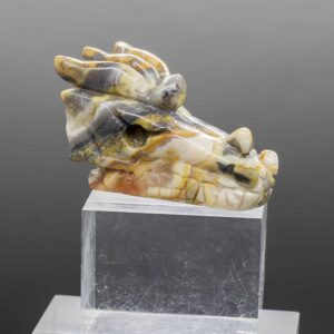 Crazy Lace Agate Dragons Head (1)