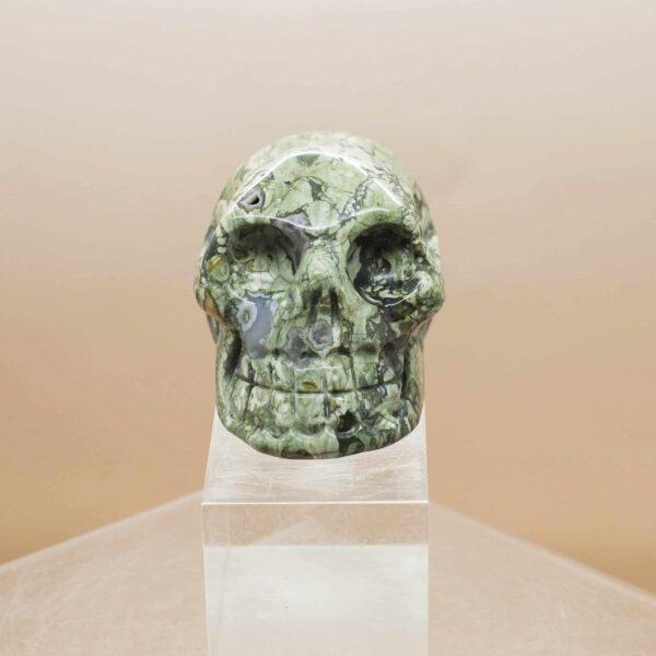 Rhyolite Skull (1)