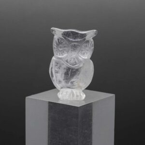 Clear Quartz Owl (8)