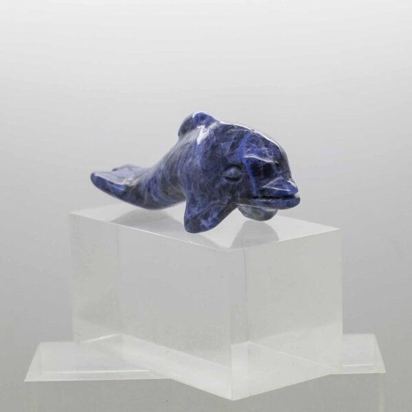 Sodalite Dolphin (4)