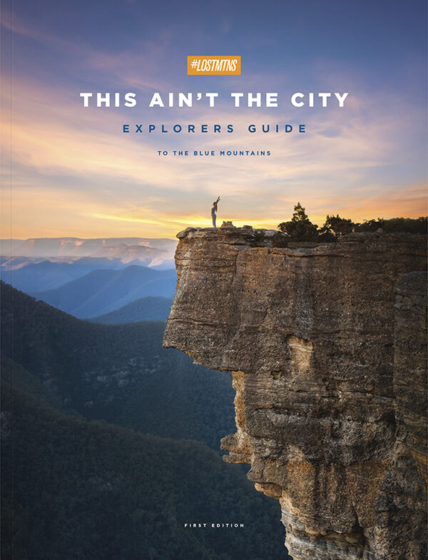 thisaintthecity cover
