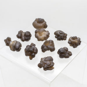 Brown Chalcedony (1)