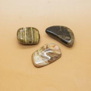 Petrified Wood Hand Stones 1