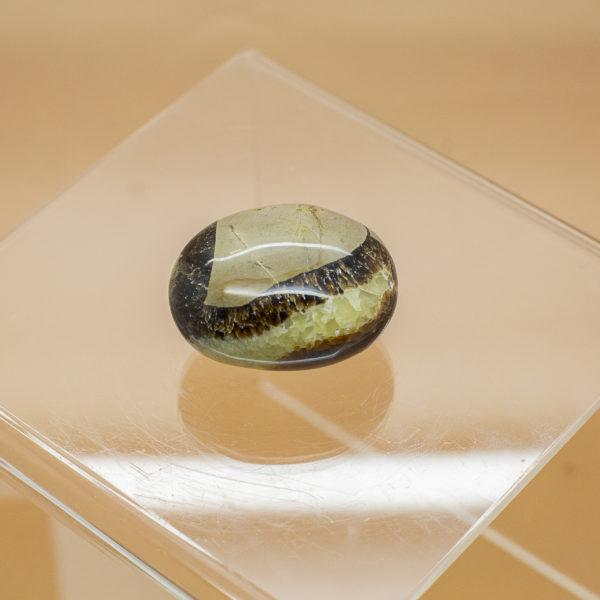 septarian hand stone (3)